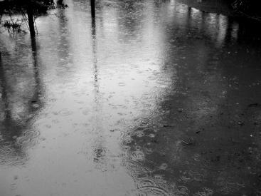 PARK AND RAIN