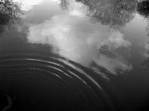 REFLECTIONS NO 7