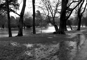 THE FLOODING